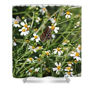 Butterfly 35 Shower Curtain