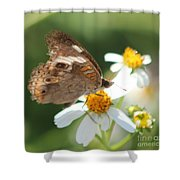 Butterfly 39 Shower Curtain