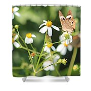 Butterfly 44 Shower Curtain