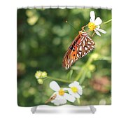 Butterfly 47 Shower Curtain