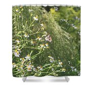 Butterfly 49 Shower Curtain