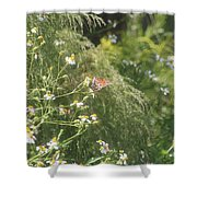 Butterfly 50 Shower Curtain