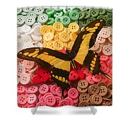 Butterfly And Buttons Shower Curtain