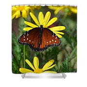 Butterfly And Yellow Flowers Shower Curtain