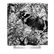 Butterfly Bark Black And White Shower Curtain