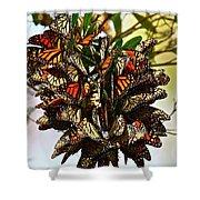 Butterfly Bouquet Shower Curtain