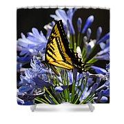 Butterfly Catcher Shower Curtain