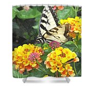 Butterfly Dining Bdwc Shower Curtain
