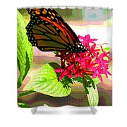 Butterfly Flowers Shower Curtain