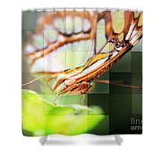 Butterfly Frosted Glass Shower Curtain