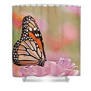 Butterfly Garden Iv Shower Curtain