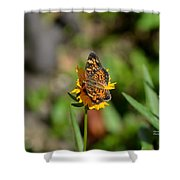 Butterfly Gold Shower Curtain