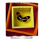 Butterfly In Box Shower Curtain