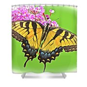 Butterfly In Candyland Shower Curtain