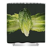 Butterfly Lettuce Shower Curtain