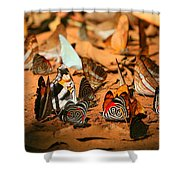 Butterfly Menagerie Shower Curtain