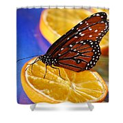 Butterfly Nectar Shower Curtain
