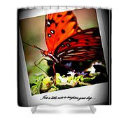 Butterfly Note Card Shower Curtain