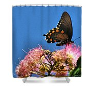Butterfly On Mimosa Blossom Shower Curtain