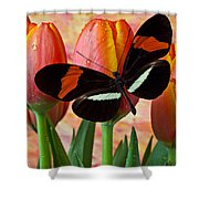 Butterfly On Orange Tulip Shower Curtain