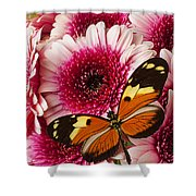 Butterfly On Pink Mum Shower Curtain