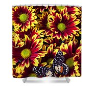 Butterfly On Yellow Red Daises  Shower Curtain