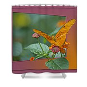 Butterfly Orange 16 By 20 Shower Curtain