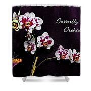 Butterfly Orchid Shower Curtain