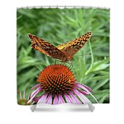 Butterfly Pitstop Shower Curtain