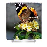 Butterfly Sipping Lantana Luscious Lemonade   Shower Curtain