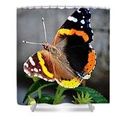 Butterfly Tai Chi On Lantana Luscious Lemonade Shower Curtain