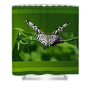 Butterfly White 16 By 20 Shower Curtain