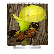 Butterfly With Calla Lily Shower Curtain