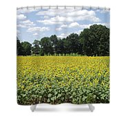 Buttonwood Farm 2 Shower Curtain