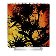 By Night Shower Curtain