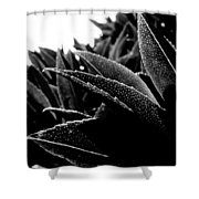 By The Estuary Shore  Shower Curtain