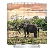 By Waters Edge Shower Curtain
