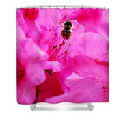 Bzzzz Shower Curtain
