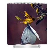 Cabbage White Butterfly Shower Curtain