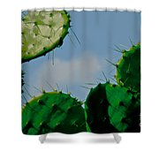 Cacti Junkie Shower Curtain