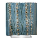 Cactus 13 Shower Curtain