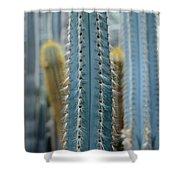 Cactus 14 Shower Curtain