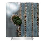 Cactus 17 Shower Curtain