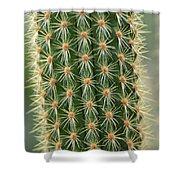 Cactus 19 Shower Curtain