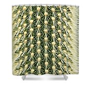 Cactus 21 Contrast Shower Curtain