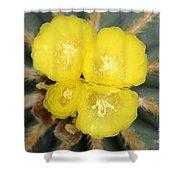 Cactus 37 Shower Curtain