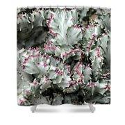 Cactus 58 Shower Curtain
