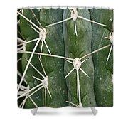 Cactus 61 Shower Curtain