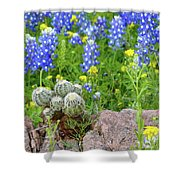 Cactus And Bluebonnets 2am-28694 Shower Curtain