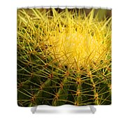 Cactus Crown Shower Curtain